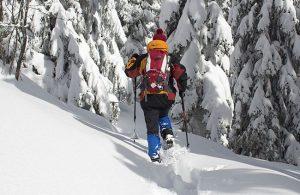 Escursioni sulla neve con le ciaspole